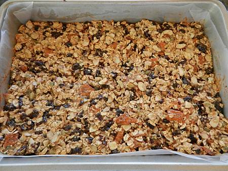 Aug262012 homemade energy bar 自製能量棒