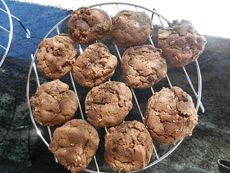 Sep012012 Cocoa Chocolate Chip Cookies 巧克力雙重奏餅乾