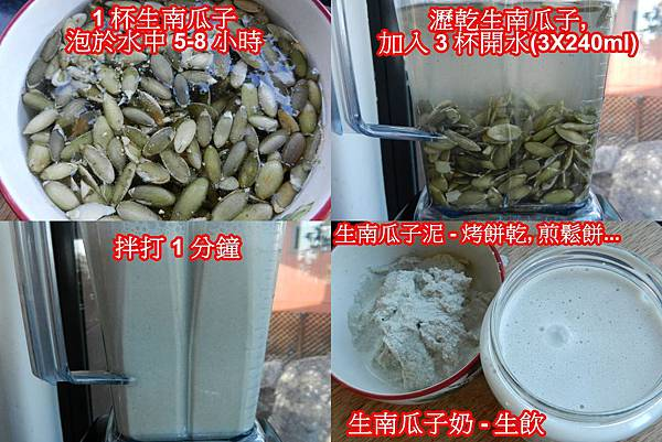 Apr272013 raw pumpkin seed milk sop