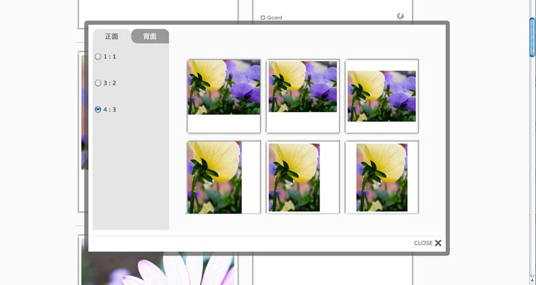 layout_3.jpg