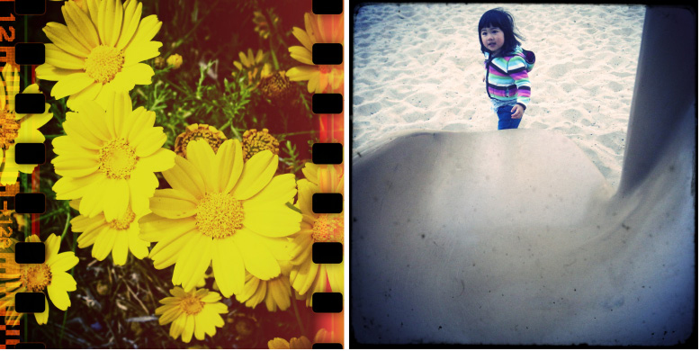 ToyCameraAnalogcolor5.jpg