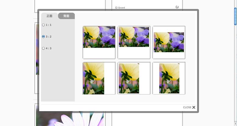 layout_2.jpg