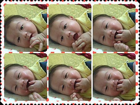 照片 (2).PNG