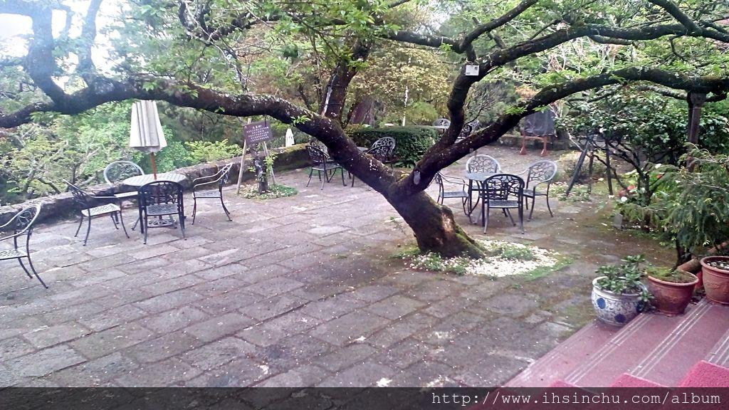 在櫻花樹下松庭露天咖啡喝一杯咖啡,沐浴在高山芬多精,伴隨晚霞及雲海,享受鳥語花香,百花齊放,絕對是永生難忘的體驗。