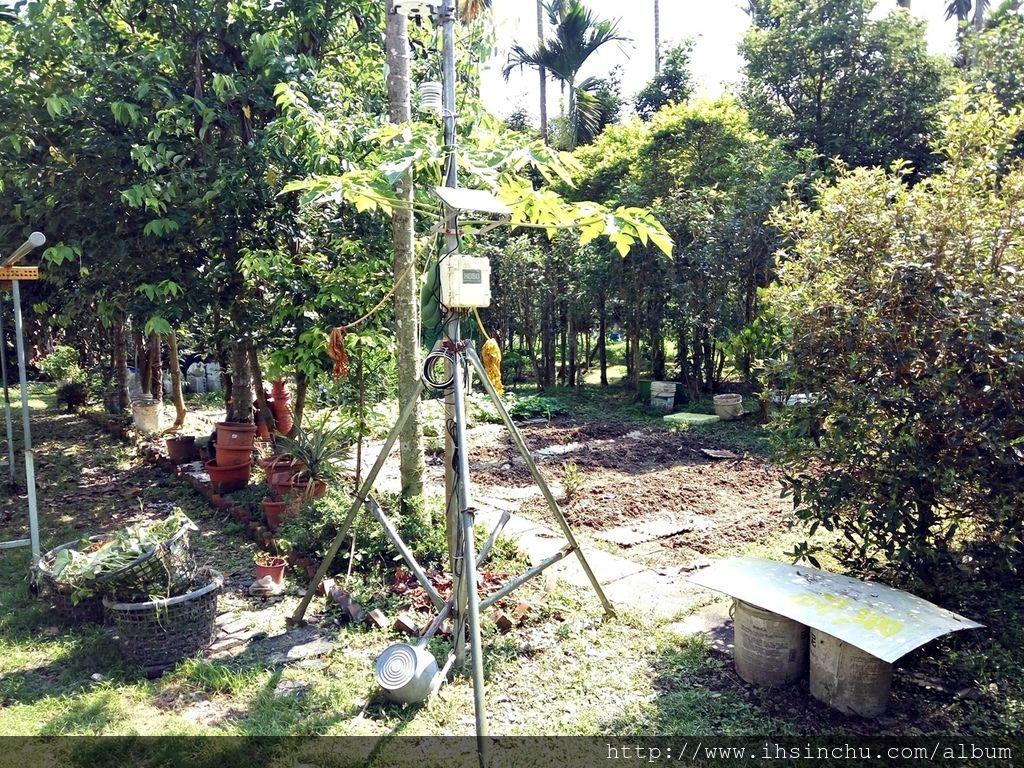 花鳥新村的後院跟林務局(林業試驗所)合作一些植物培育,例如牛樟芝等,後院占地非常大,儼然就跟森林一樣,不過蚊子超多的,來山里防蚊液要準備好,否則可是會滿身包喔。