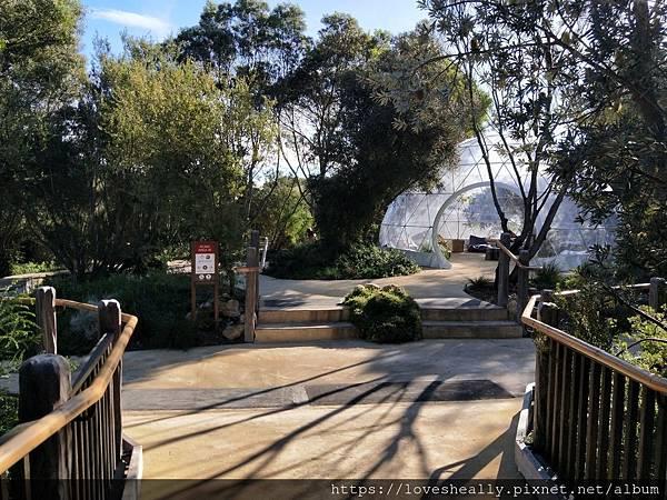 澳洲旅遊|墨爾本景點推薦-摩寧頓半島溫泉-戶外山頂溫泉-邊泡溫泉邊欣賞墨爾本風景