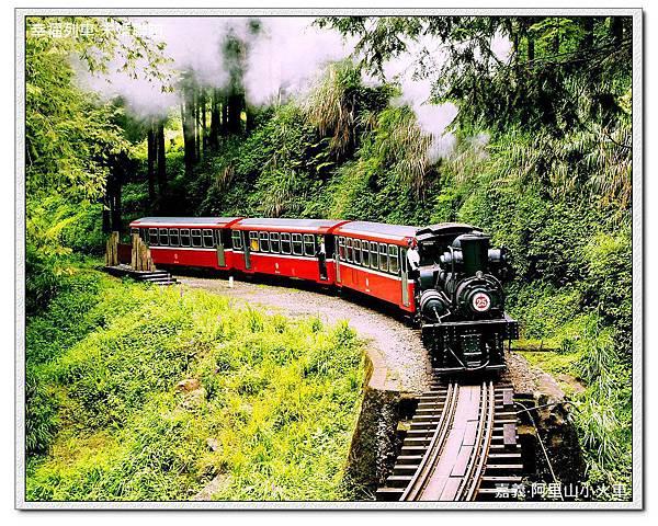 嘉義阿里山小火車