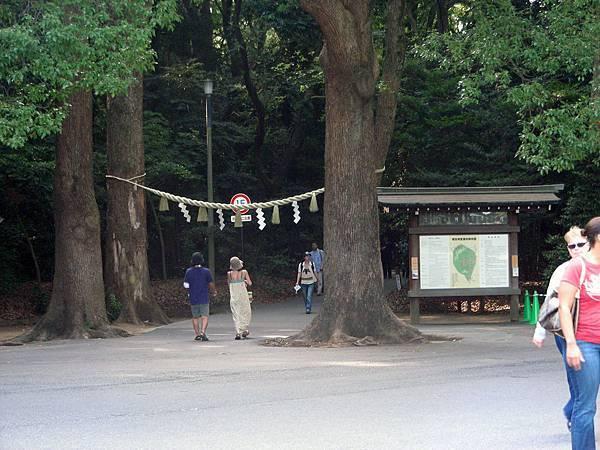 明治神宮.JPG