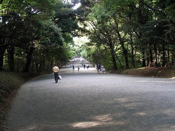 明治神宮 (3).JPG