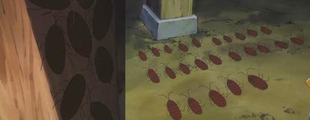 蟑螂.jpg