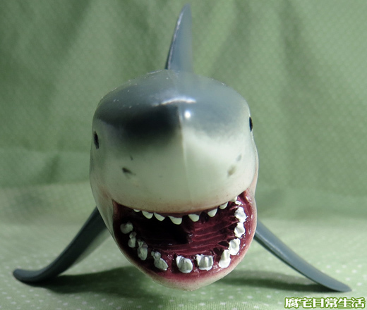 大白鯊 (2)