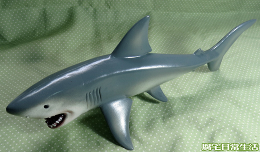 大白鯊 (3)