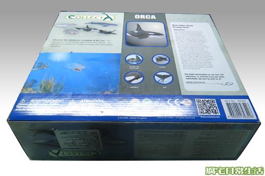 海洋生物 (3)