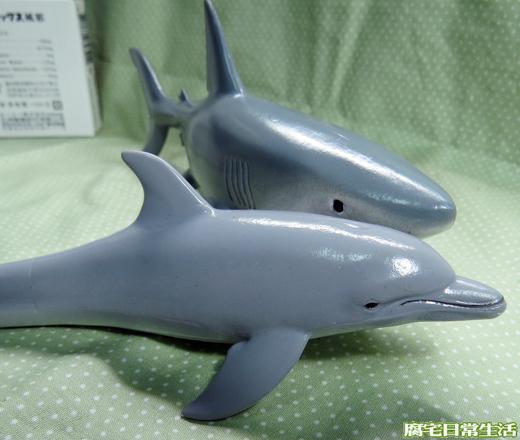海洋生物 (35)