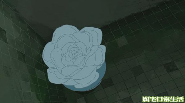 不會想知道的花