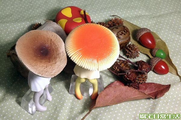 蘑菇子 (4)