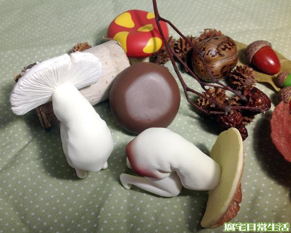 蘑菇子 (9)