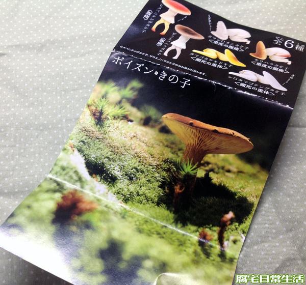 蘑菇子 (19)