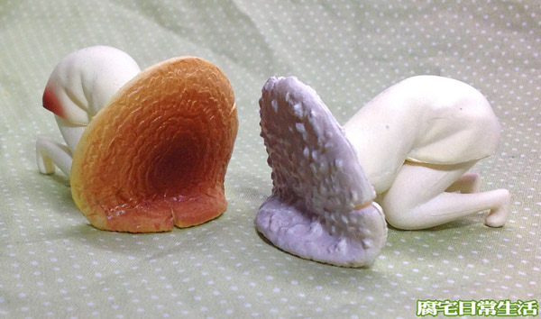 毒菇精 (10)
