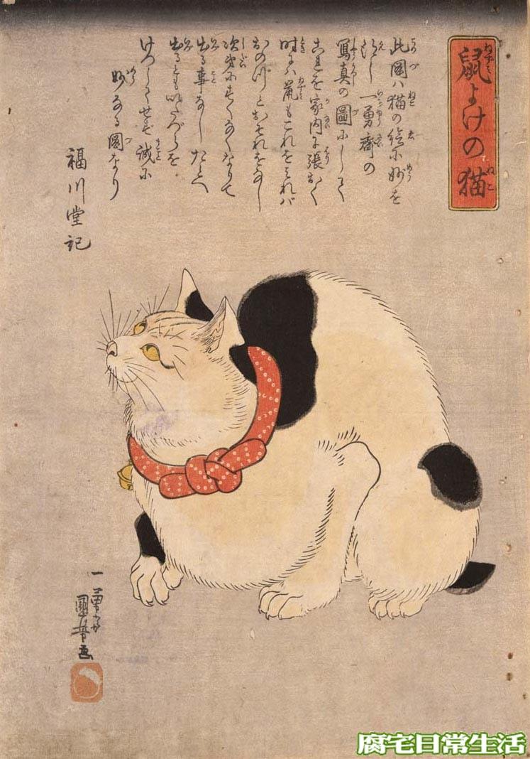 鼠よけの猫.jpg