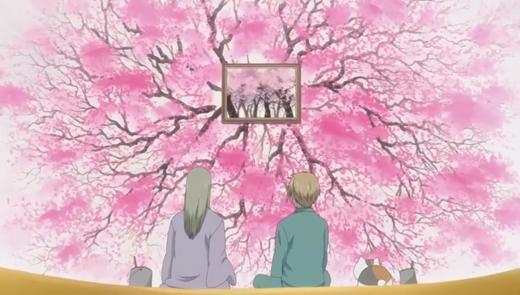 櫻花爛漫.jpg