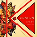 James Jean Kindling: 12 Removable Prints