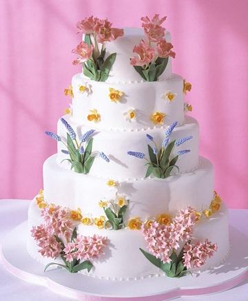 cake 48