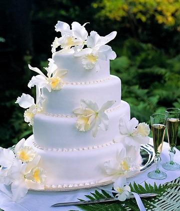 cake 74