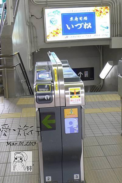 P1250615-1.jpg