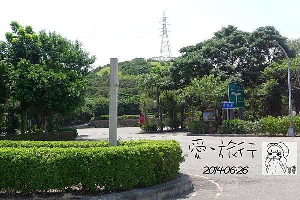 P1390015-1.jpg