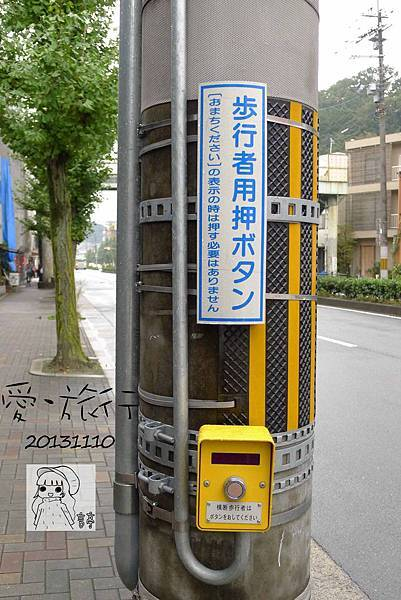 P1330830-1.jpg