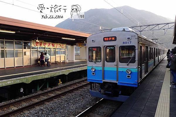 P1360647-1.jpg