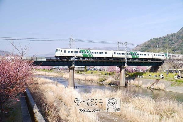 P1160954-1.jpg