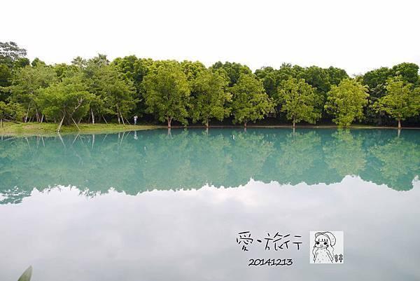 P1320906-1.jpg