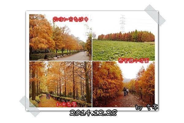 P01-1.jpg