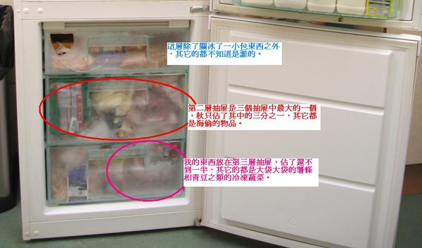 冷凍庫.JPG