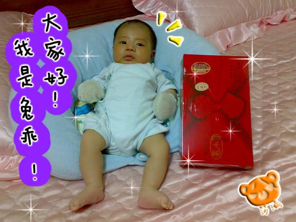 yoyo_2.jpg