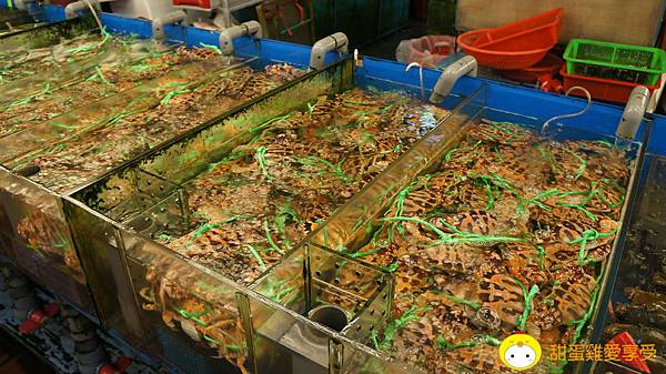 竹圍漁港07.JPG