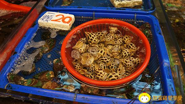 竹圍漁港09.JPG
