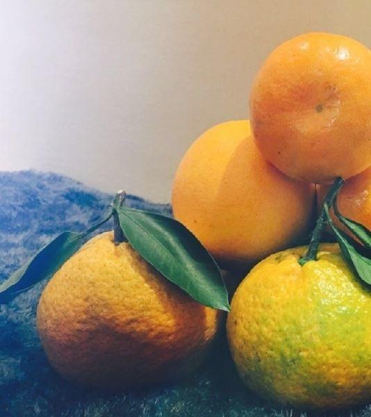妊娠糖尿病飲食-橘子