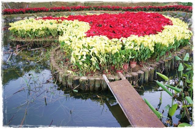 白石湖同心池