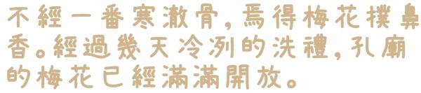 台北孔廟賞梅