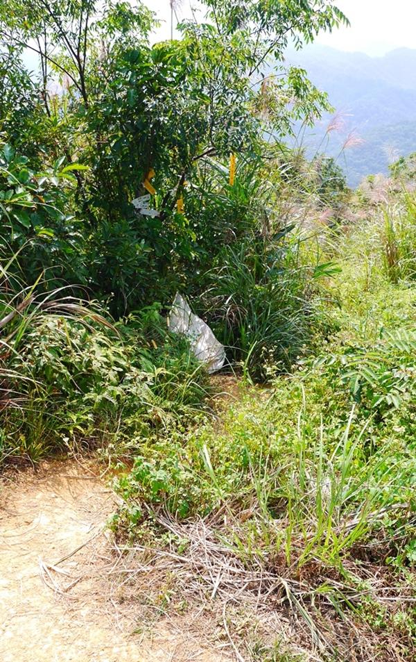秘境石碇鱷魚島前往方法