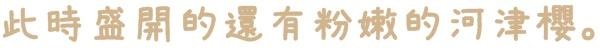 騰龍御櫻賞櫻秘境