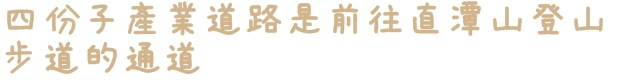 新店四份子產業道路賞桐花