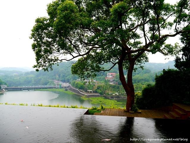 桐花二泉湖畔