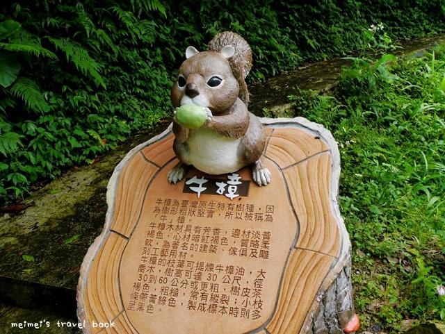 貓空茶香環狀步道 壺穴吊橋 茶展中心