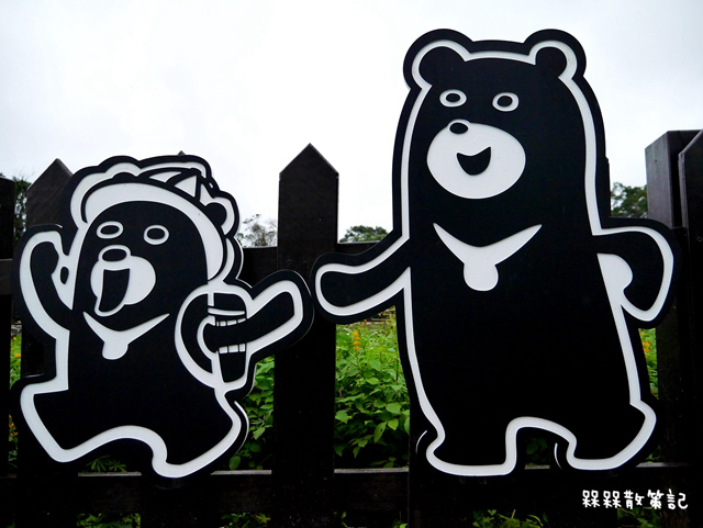 樟樹步道繽紛花季貓空閃閃淚光魯冰花