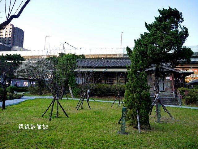 逸仙公園賞梅