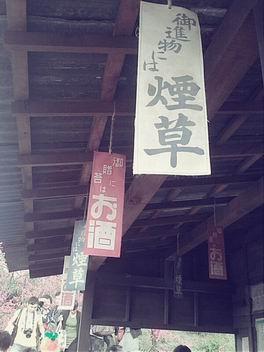 林口霧社街【塞德克巴萊片廠】_1015083902.jpg